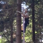 Waldbearbeitung