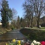 Frühling im Oostal lässt die Natur explodieren