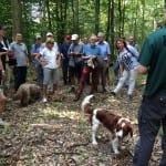 Waldbereisung mit dem Gemeinderat